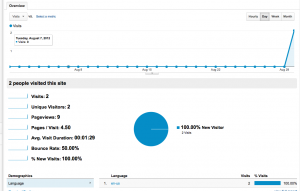A graph of number of visits displayed in Google Analytics